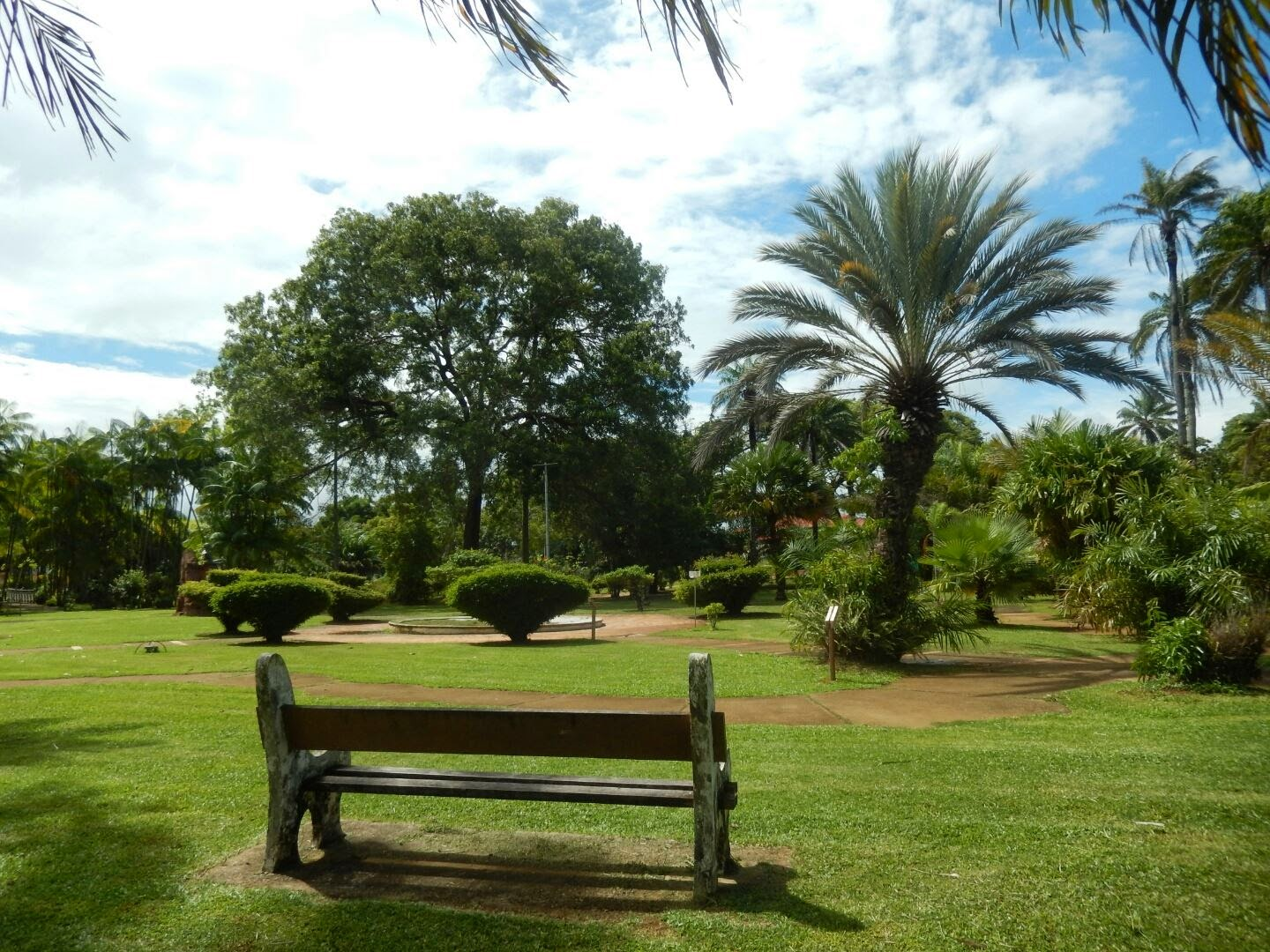 jardin botanique de cayenne cayenne site internet du ctg comit du tourisme de guyane. Black Bedroom Furniture Sets. Home Design Ideas