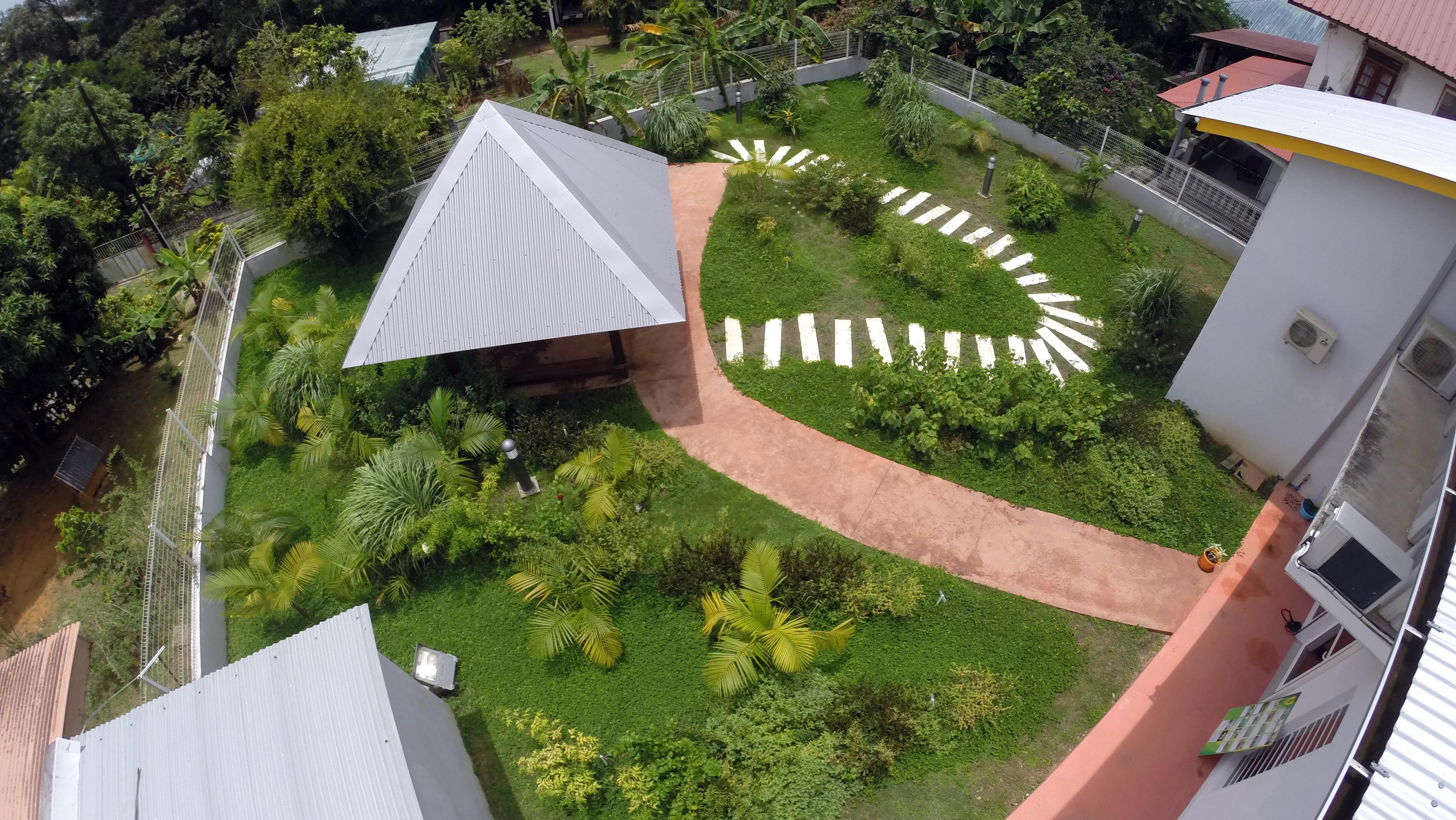 Decouverte du jardin de plantes m dicinales remire for Plantes et jardins avis