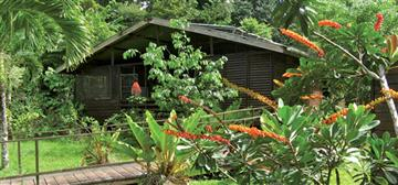 AMAZONE-NATURE-LODGE